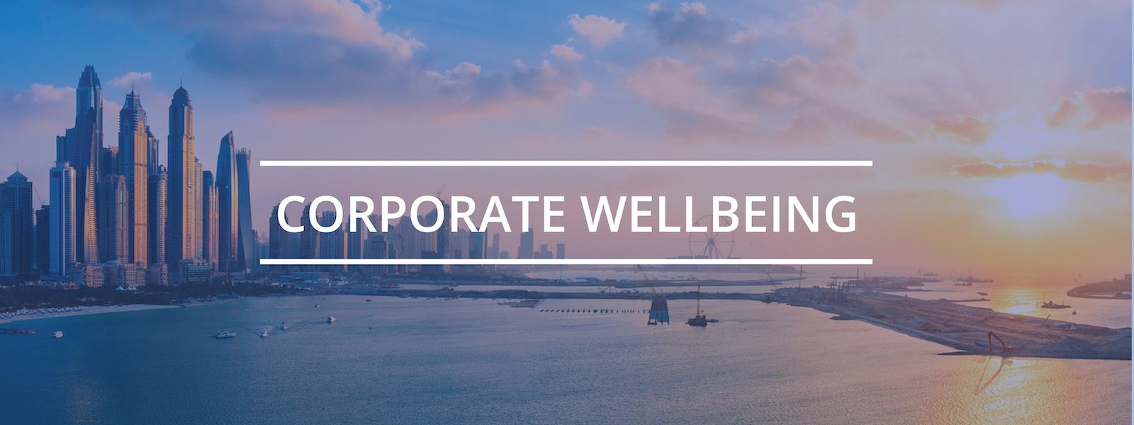 corporate health and wellbeing consultations workshops courses help
